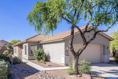 Continental Ranch Sunflower Single Family Home Active Contingent: 8039 W Cottonwood Wash Way