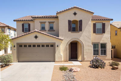 Sahuarita Single Family Home For Sale: 664 W Vuelta Buril