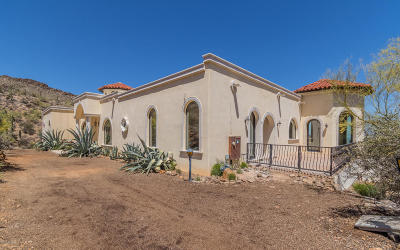 Tucson Single Family Home For Sale: 6500 W Sky Canyon Drive