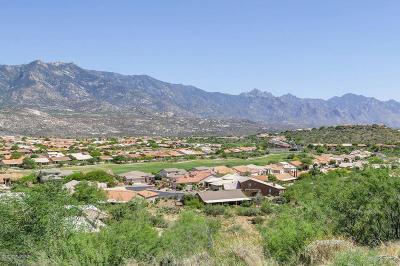 Saddlebrooke Single Family Home For Sale: 36167 S Boulder Crest Drive