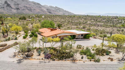 Tucson Single Family Home For Sale: 7720 N Sendero De Juana