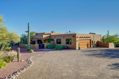 Tucson Single Family Home For Sale: 13180 E Deep Well Road