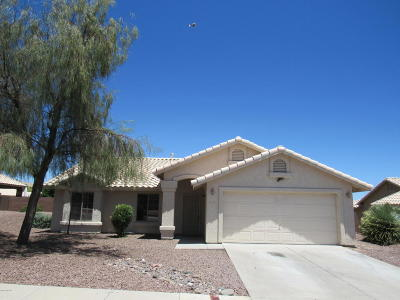 Sahuarita Single Family Home For Sale: 1686 W Corte Del Calvo