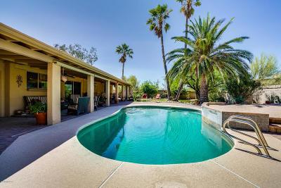 Tucson Single Family Home Active Contingent: 1101 W Emerine Drive