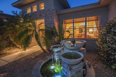 Tucson Single Family Home For Sale: 11081 E Monument Estates Circle