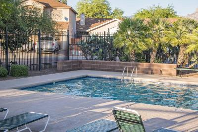 Tucson Single Family Home Active Contingent: 3054 W Country Hill Drive