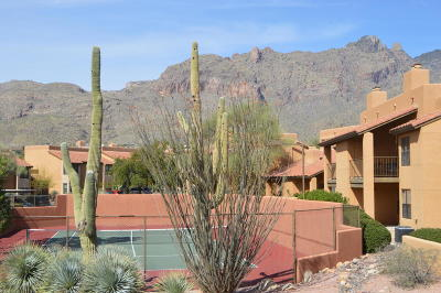 Tucson Condo For Sale: 6651 N Campbell Avenue #217