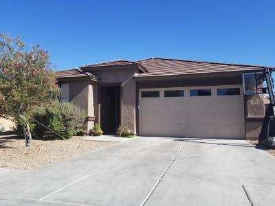 Vail Single Family Home For Sale: 319 E Desert Haven Place