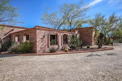Tucson Single Family Home For Sale: 2050 W Turtle Dove Lane