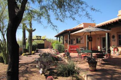 Tucson Single Family Home For Sale: 2955 N Tomahawk Trail