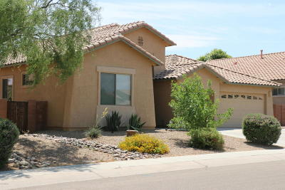Sahuarita Single Family Home For Sale: 236 N Old Camp Lane