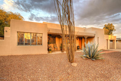 Tucson Single Family Home For Sale: 115 S Irving Avenue