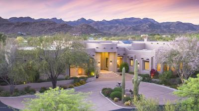 Tucson Single Family Home For Sale: 3250 W Moore Road