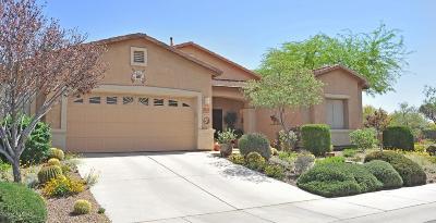 Marana Single Family Home For Sale: 11549 W Amber Stone Drive