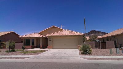 Tucson Single Family Home For Sale: 3441 S Sun Splash Drive