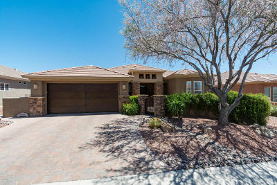 Marana Single Family Home For Sale: 13750 N Heritage Canyon Drive