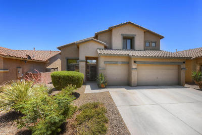 Tucson Single Family Home For Sale: 8274 N Rocky Brook Drive