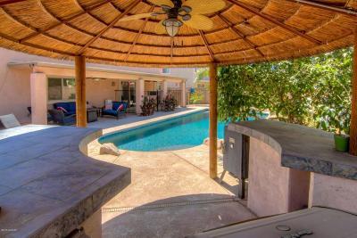 Marana Single Family Home For Sale: 12587 N Hirsutum Drive