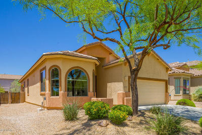 Oro Valley Single Family Home Active Contingent: 12863 N Tarzana Drive