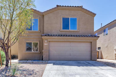 Single Family Home For Sale: 6372 S Vanishing Pointe Way
