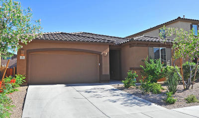Tucson AZ Single Family Home For Sale: $285,000