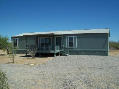 Sahuarita Manufactured Home For Sale: 6827 E Cactus Patch Way