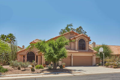Oro Valley Single Family Home For Sale: 11741 N Dragoon Springs Drive