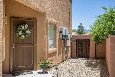 Tucson Single Family Home For Sale: 3585 W Goshen Drive