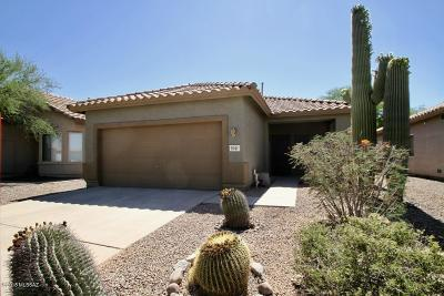 Tucson Single Family Home Active Contingent: 9741 N Sandy Valley Drive