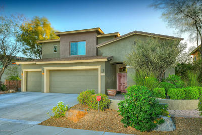 Oro Valley Single Family Home For Sale: 11797 N Mesquite Hollow Drive