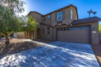 Tucson Single Family Home For Sale: 4972 W Paseo Don Carlos