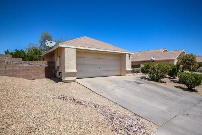 Tucson Single Family Home For Sale: 1171 N Chamberlain Place