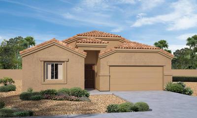 Marana Single Family Home For Sale: 12904 N Benoni Court