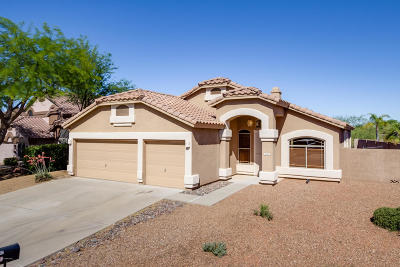 Oro Valley Single Family Home For Sale: 11341 N Twin Spur Court