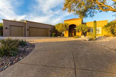 Tucson Single Family Home For Sale: 9971 E Sabino Springs Place