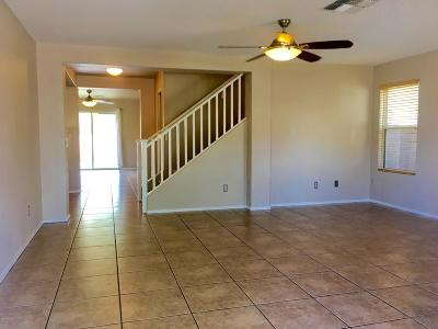 Tucson Single Family Home For Sale: 4204 E Stone River Drive