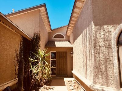 Tucson Single Family Home For Sale: 9291 N Kanawha Street