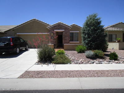 Tucson Single Family Home For Sale: 1117 W Montelupo Drive