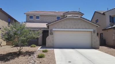 Sahuarita Single Family Home For Sale: 14397 S Avenida Castano Road