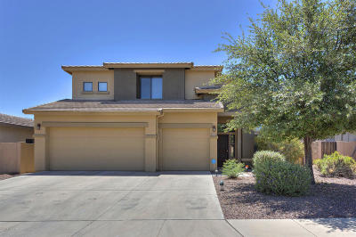 Sahuarita Single Family Home For Sale: 15195 S Via Rancho Grande
