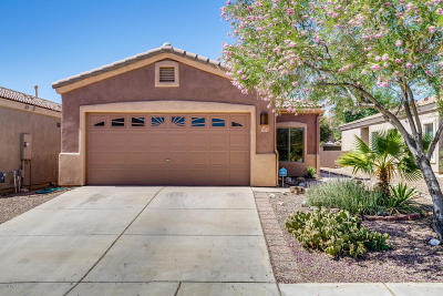 Sahuarita Single Family Home Active Contingent: 202 E Calle Puente Lindo