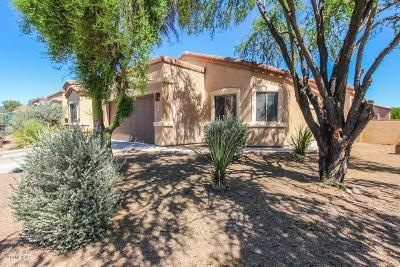 Sahuarita Single Family Home For Sale: 325 E Placita Nubes Blancas