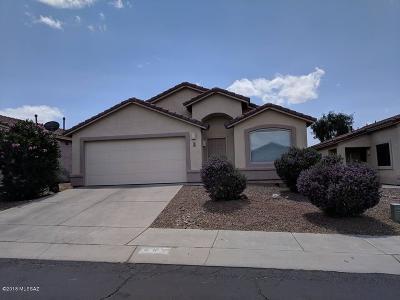 Tucson Single Family Home For Sale: 483 W Tara Danette Drive