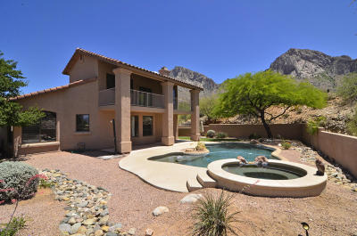 Tucson Single Family Home For Sale: 10135 N Calle Del Carnero