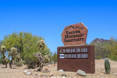 Tucson Single Family Home For Sale: 3510 S Sun Splash Drive