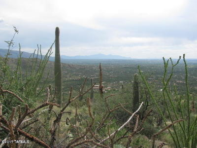 Tucson Residential Lots & Land For Sale: 5365 N Wentworth Road N
