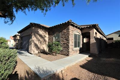 Sahuarita Single Family Home For Sale: 865 W Calle Valenciana