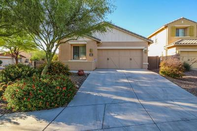 Single Family Home For Sale: 1314 W Varese Way