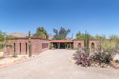 Tucson Single Family Home For Sale: 6840 N Nanini Drive