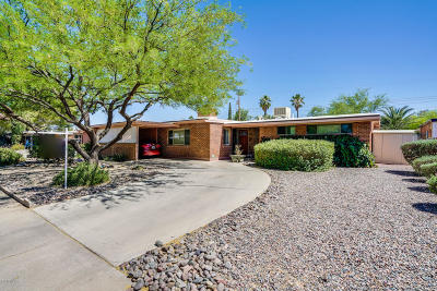 Tucson Single Family Home For Sale: 7310 E Princeton Drive